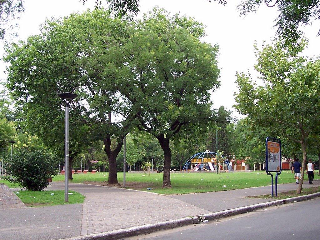 plazas 3